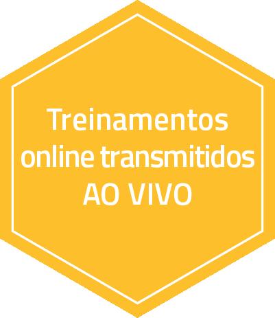 suporte com treinamentos online