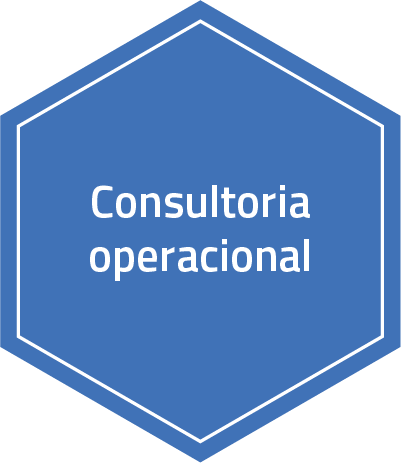 consultoria operacional